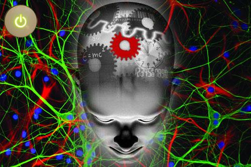 Resultado de imagen de Nuestro cerebro circuitos y conexiones sin fin